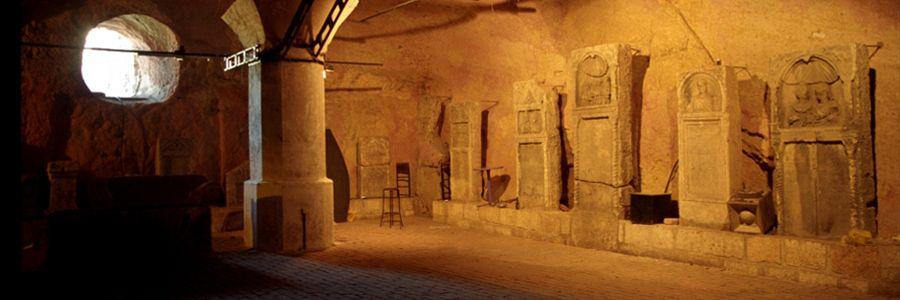 Underground Wine cellar where we will necessarily have wine branch.