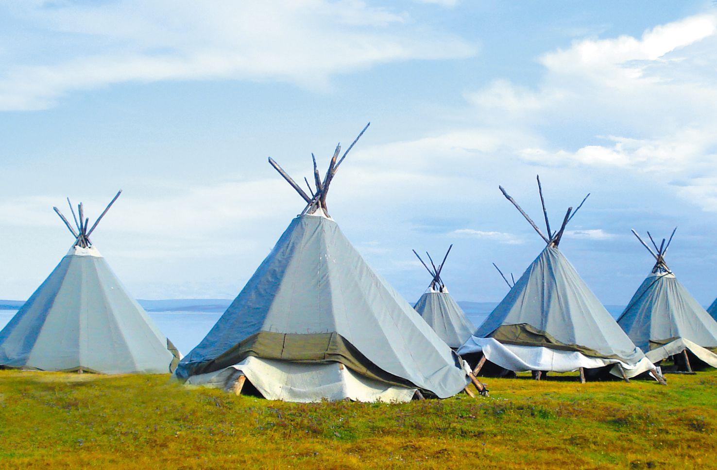 nomadic, tribe