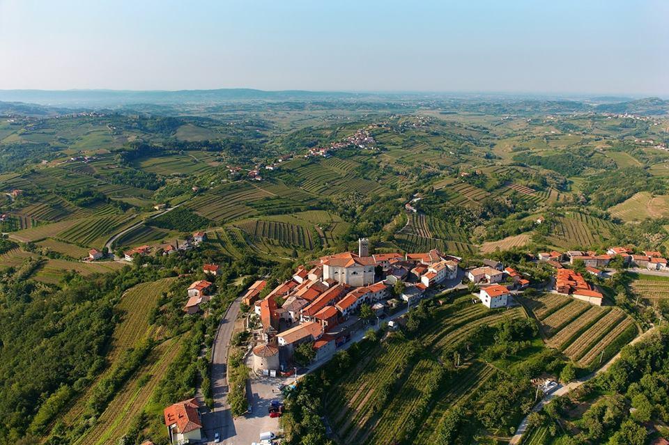 brda, wine, gourment, tour, slovenia