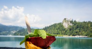 lake-lounge-bled