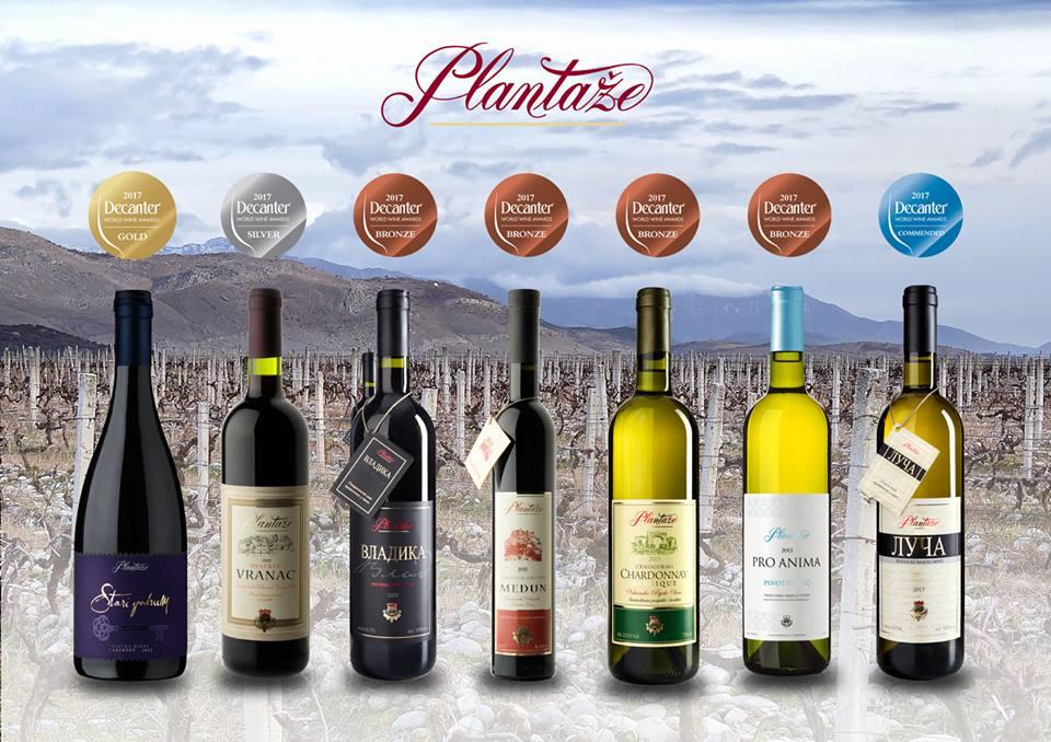 plantaže_wine_cellar