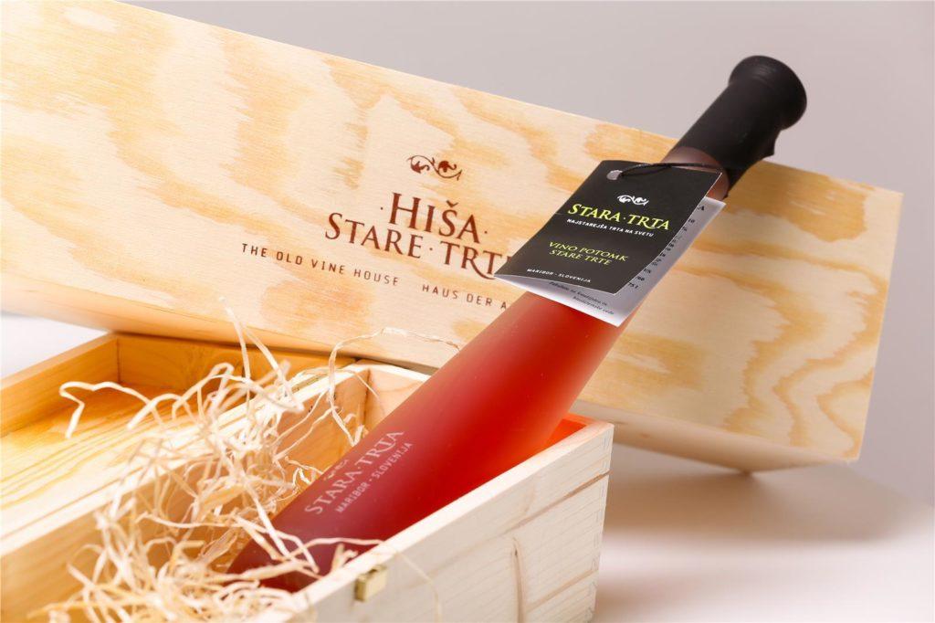maribor_wine_oldest_vine