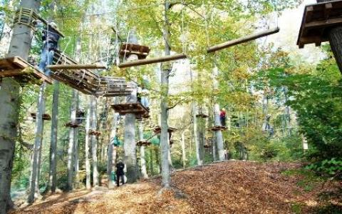 kletterpark-wiki-adventure-park-graz-steiermark-klettern-hochseilgarten