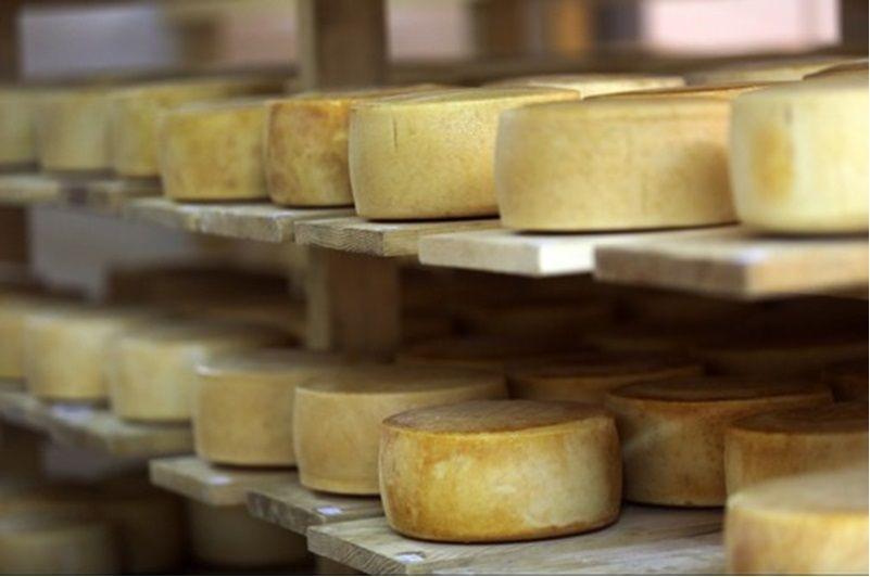 island, pag, cheese