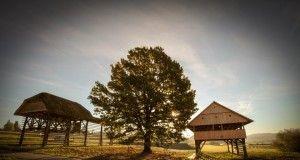 dolenjska, dežela, kozolci, slovenia