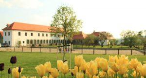Wieger's Villa