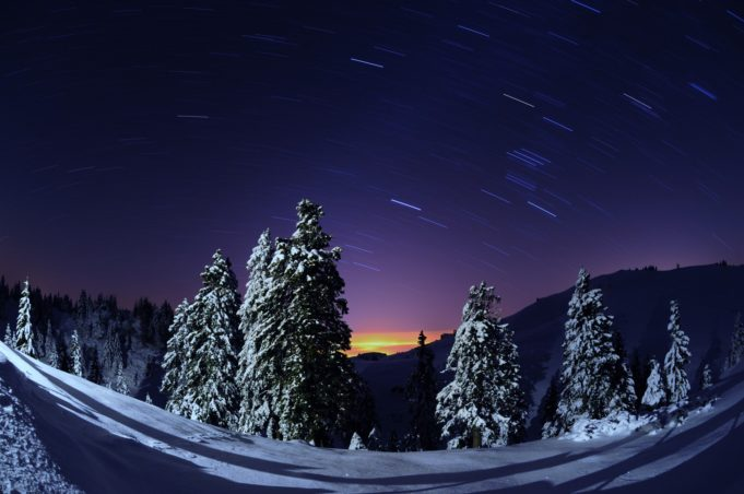 incentive_night_sledding_velika_planina_plateau_tourism_ljubljana