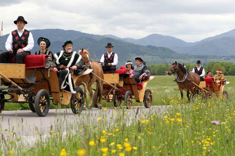 Bled_ horse_carriage_fjakarji1
