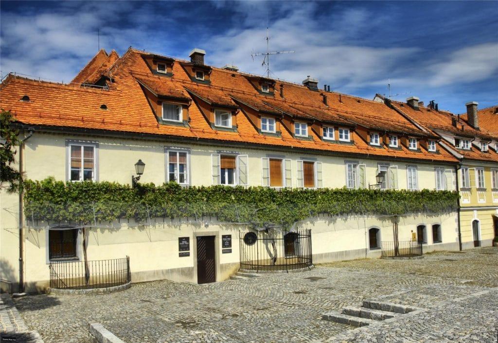 old_vine_house_maribor