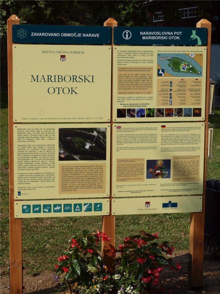 maribor_island_mariborski_otok