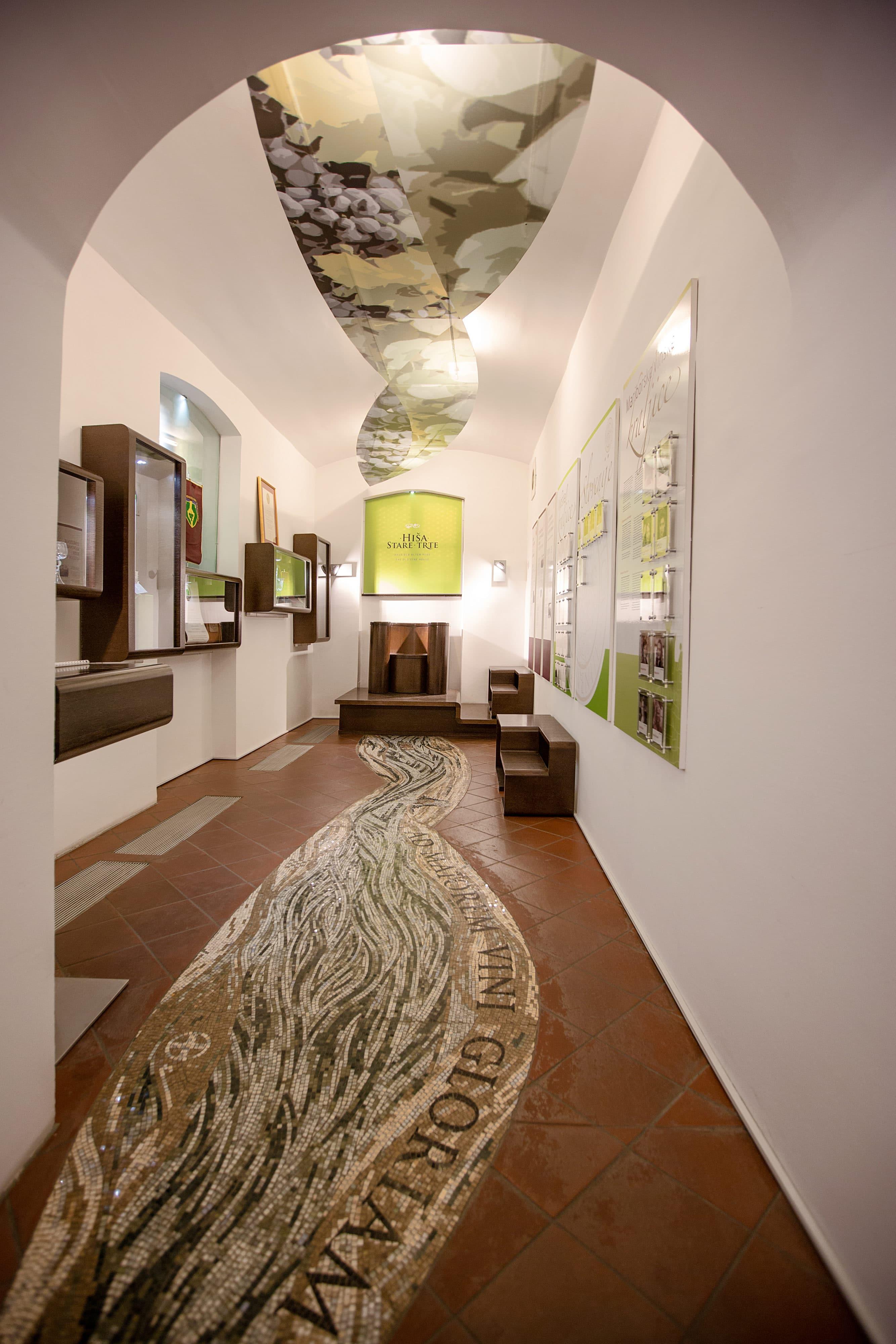 maribor_old_vine_house_mosaic