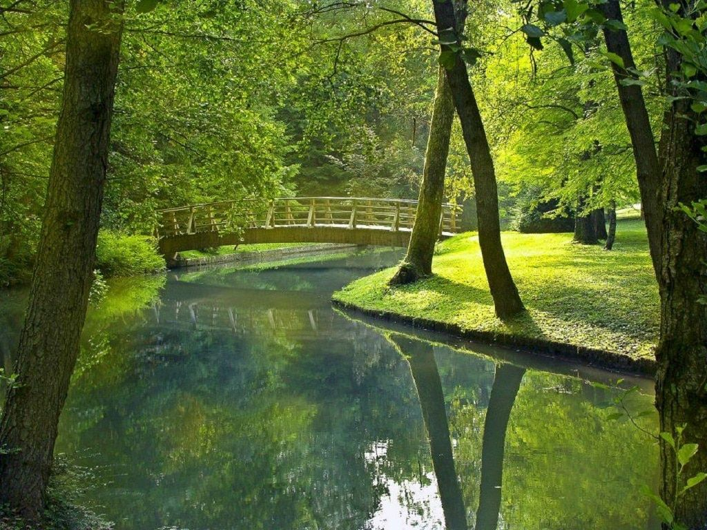 brdo_estate_nature_bridge_park