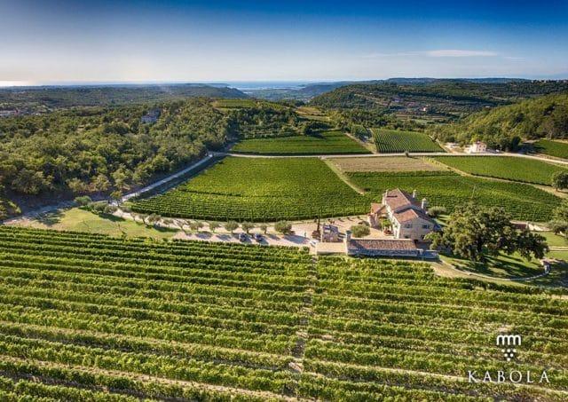 kabola_winery