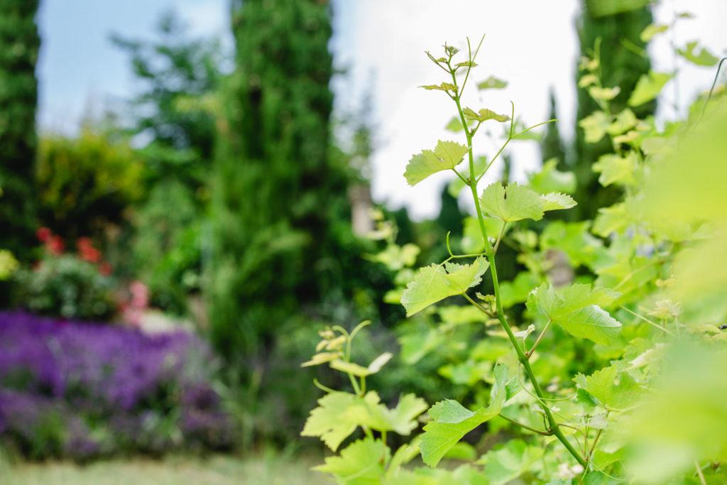 polz_garden_austria