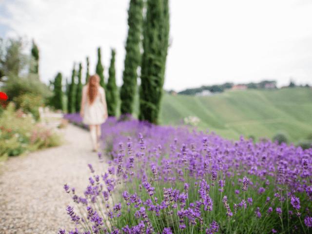 polz_garden