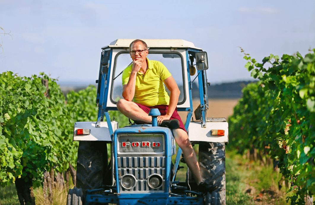 sopron-wine-hungary