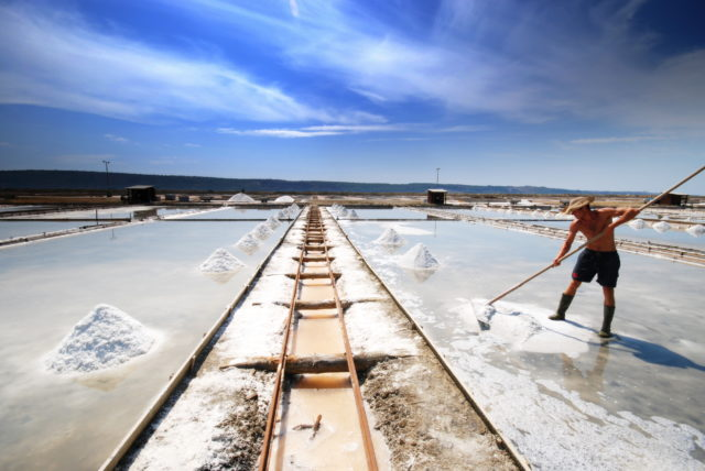 secovlje-salt-pans-piran-conventa