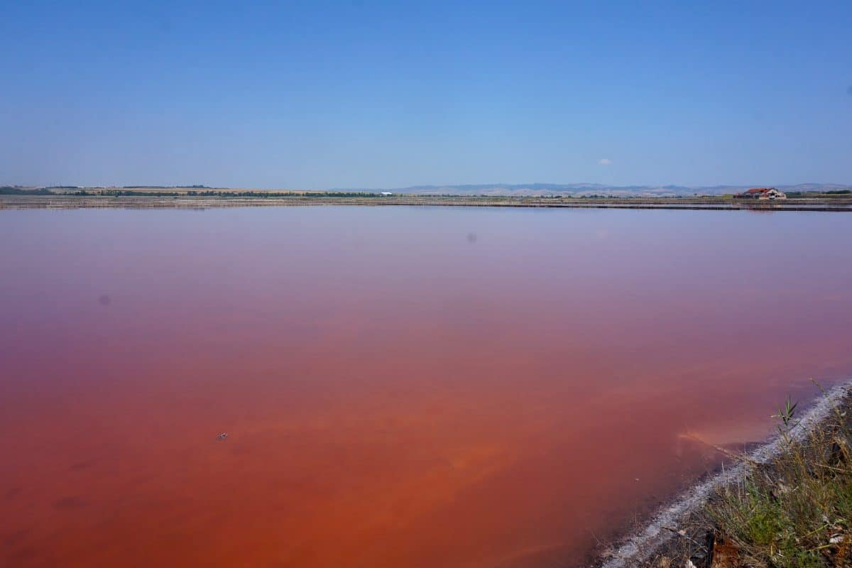 bulgaria-burgas-bathing-lake-pink-salt-lake
