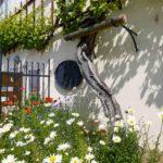 Maribor_Pohorje_Old Vine House_spring