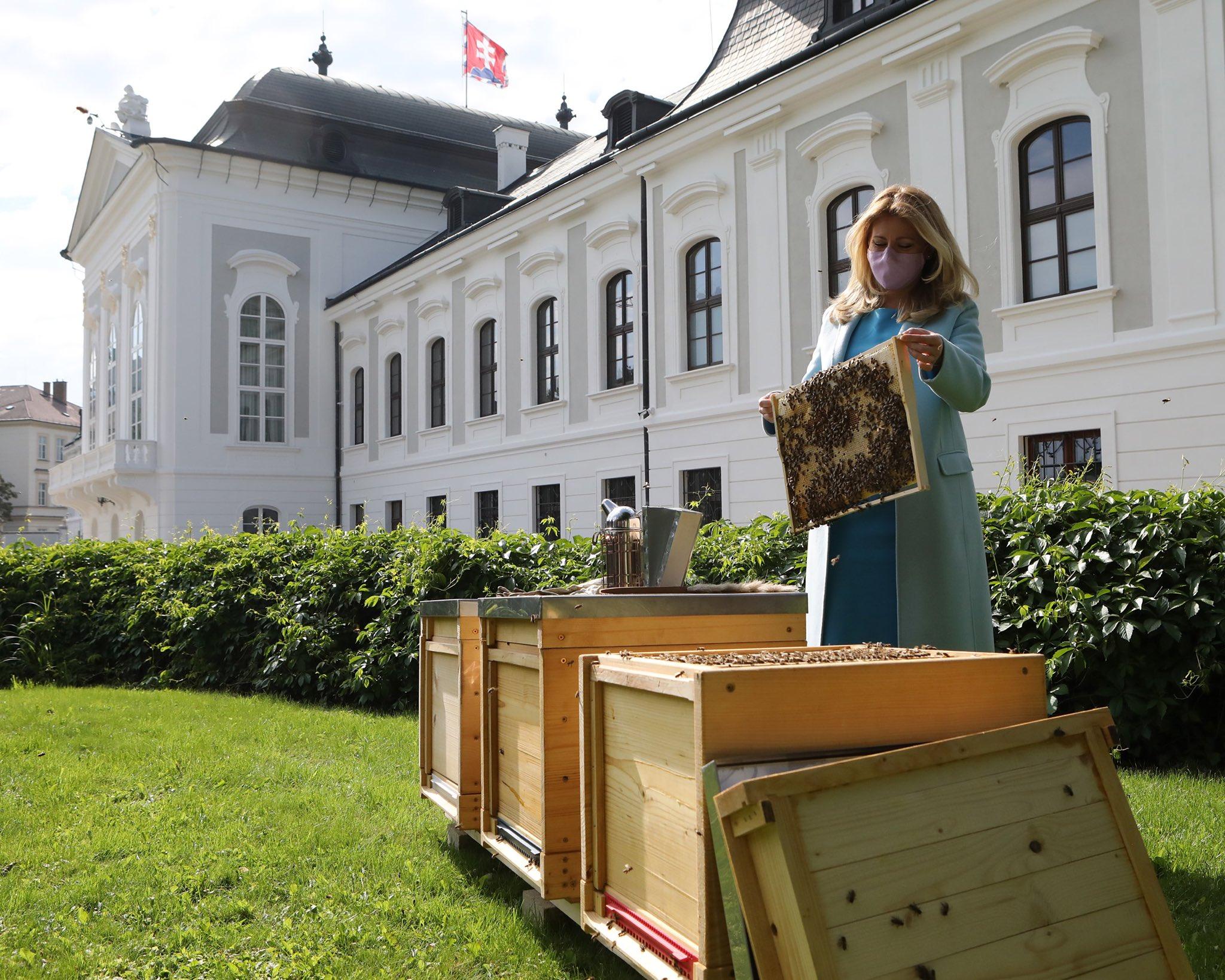 bratislava-presidential-palace-beekeeping