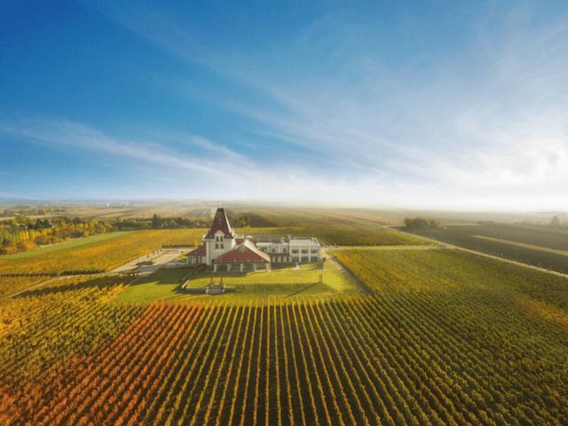 zvonko_bogdan_winery