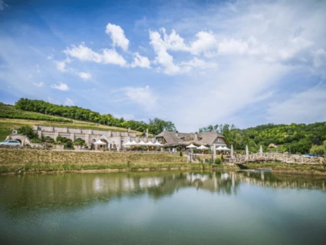 bodri_winery