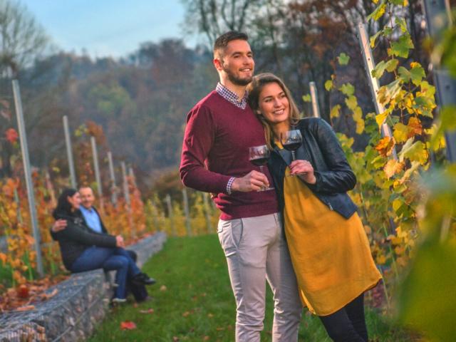 ljubljana castle vineyard