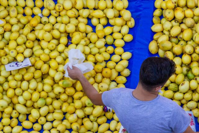 lemons-market-fruit-stand-shop