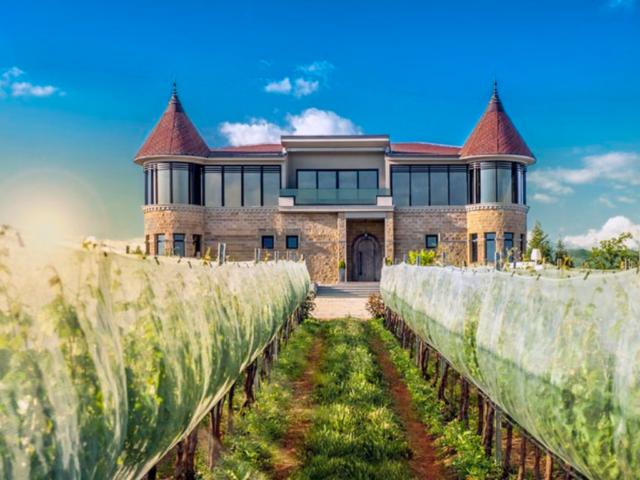 kamnik_winery
