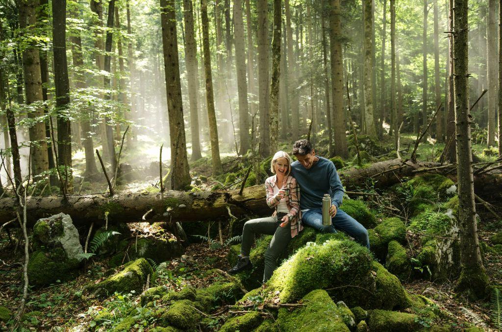 kocevje_forest_ciril_jazbec